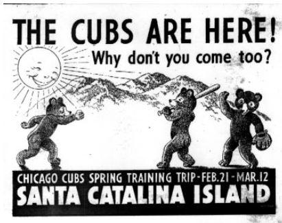 Cubs Catalina