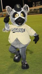 Pancho el Lemurwww.laredolemurs.com