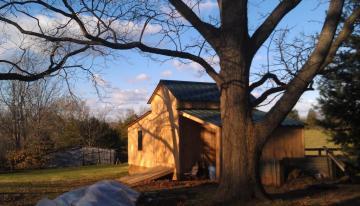 good morning barn2