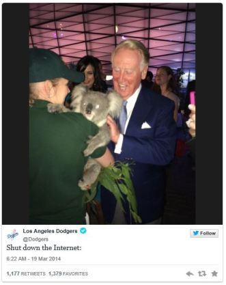 vin koala
