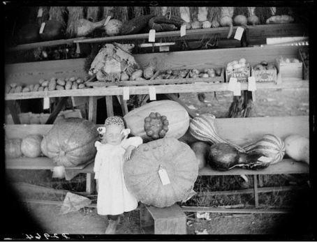Vegetable Exhibit Custer County Fair Broken Bow NE 1886