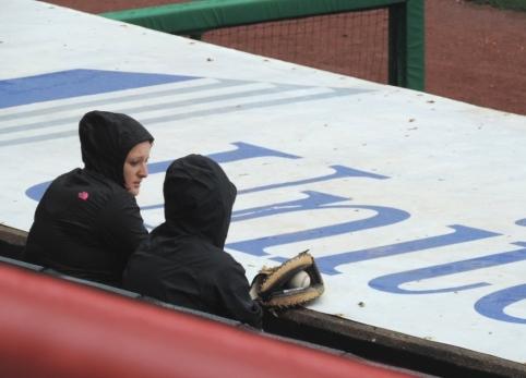 Two Hardy Fans