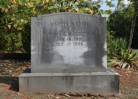 maplewood-cemetery-marvin-goodwin-gordonsville
